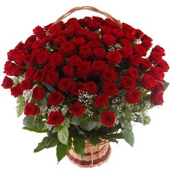 Kosz 100 róż